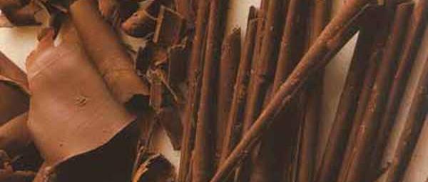 Chocolat-w.600