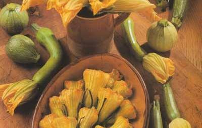 fleurs-de-courgette-w