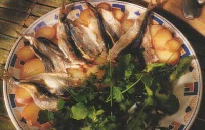 sardine-w1